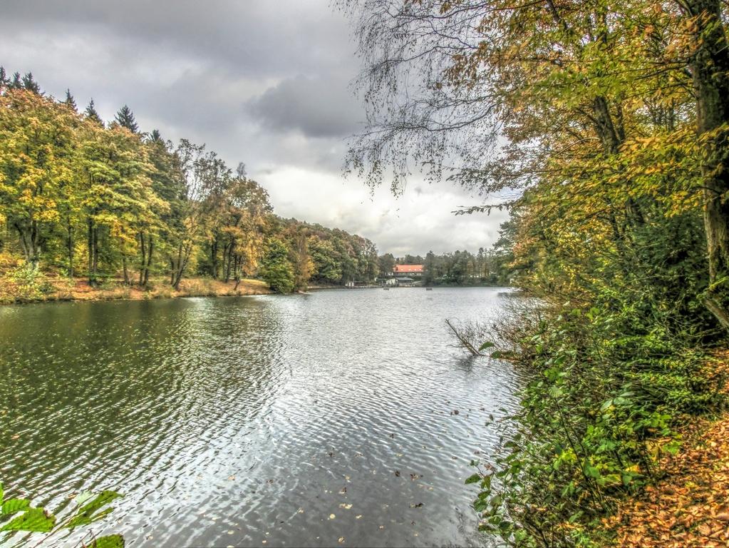 Heiligenwald
